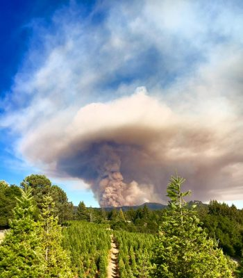 Loma Fire from Summit Road, 2016